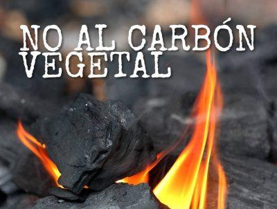 No al carbón vegetal ilegal !